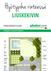 Hyotypiha_rinteessa_liuskekivin