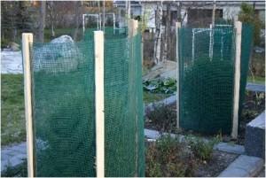 Esimerkiksi tiheäsilmäisestä muoviverkosta saa kätevästi varjostavan sermin kasvien eteläpuolelle.