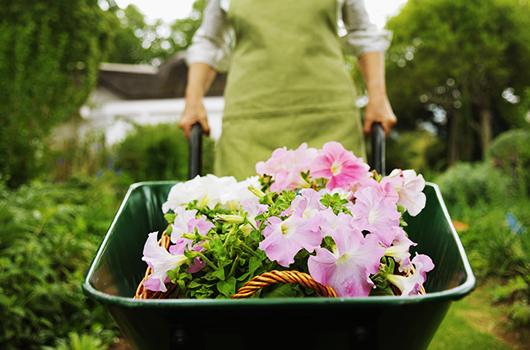 Nainen ja kukkakärry_skd274273sdc[1]_pieni