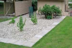 Vanhoista betonilaatoista tehty rajaus marjatarhan ja nurmikon välille.