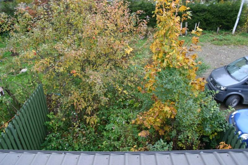 Kuvakulma saneerattavaan puutarhaan katolta käsin.